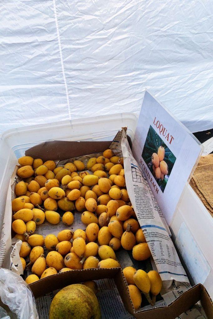 Big Island Hawaii Loquat at Local Farmer's Market